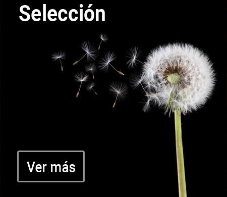 Selección