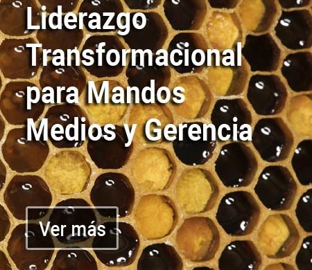 Liderazgo Transformacional para Mandos Medios y Gerencia