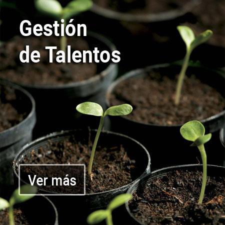 Gestión de Talentos